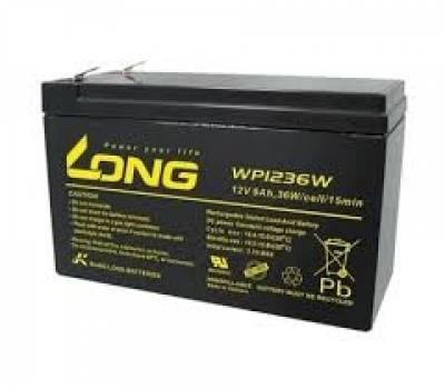 ẮC QUY LONG AGM VRLA 12V-9AH (WP1236W)