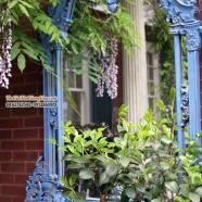 16 cách đặt gương trong vườn