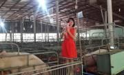 Tiến Việt Thái tham dự Triển lãm VIETSTOCK 2016