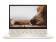 Laptop HP Pavilion 14-dv0013TU 2D7B8PA (Gold)