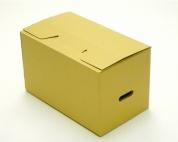 Thùng carton 10