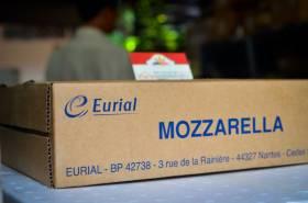 PHO-MAI-MOZZARELLA-EURIAL-FRENCH-MOZZARELLA-CHEESE-KHOI-10-KG