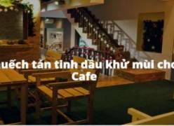 Khử mùi quán Cafe với tinh dầu bạc hà kết hợp với máy khuếch tán tinh dầu