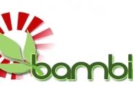 Trung tâm Bambini: Nơi...
