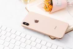 Apple Iphone Xs Max Chính Hãng