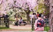 Những nét đặc trưng hấp dẫn đối với du học sinh tại Nhật