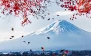 Tổng quan về du học Nhật Bản năm 2017