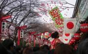 Du học Nhật bản trải nghiệm hết những nét đặc trưng của Nhật bản