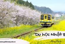 Chiba-noi-chi-phi-thap-chat-luong-giao-duc-cao-tai-Nhat-Ban