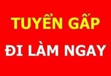Tuyen-nhan-vien-Marketing-di-lam-ngay-luong-cao-tai-quan-3-tp-hcm