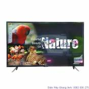 Tivi Led TCL 43D2900 43 Inch Full HD