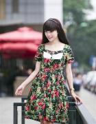 Váy Ms8027