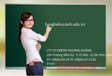 Bán bảng trường học từ xanh chống loá giá rẻ tại tphcm