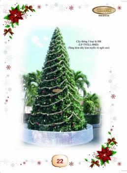 Thông Noel 3 Loại Lá