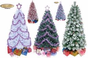 Thông Noel