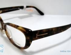 Tìm hiểu cấu tạo và các loại kính mắt