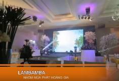 Nghi thức cưới - Vũ đoàn thiếu nhi nhảy Lambamba