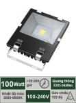 Đèn pha 100W-Mẫu A