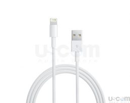 Lightning to USB Cable 1 met (công ty)