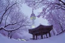 SEOUL – JEJU – LOTTE WORLD – SKIING  6N5Đ (KHỞI HÀNH MÙNG 1 VÀ MÙNG 4 TẾT)