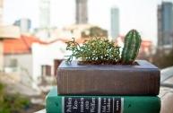 Ý tưởng trang trí nhà đáng yêu từ sách cũ