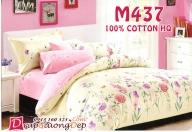 Drap 100% Cotton Hàn Quốc M437