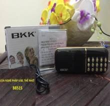 Loa-cam-usb-the-nho-B851S-2-pin-2200mah