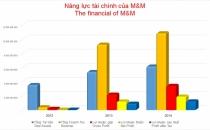 Nang-luc-tai-chinh