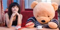 Gấu Teddy Boyds nơ 1m6,1m8, 2m