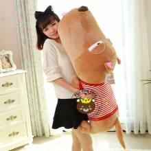 Chó Puco Hàn Quốc chính hãng