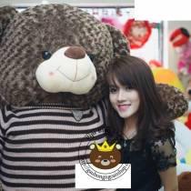 Gấu Teddy Choco Bigsize 2m
