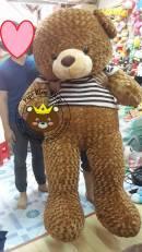 Gấu Teddy nâu áo Choco bigsize 2m