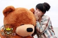 Gấu ngủ Teddy Boyds 1m8