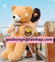 Gấu Jane Bear 1m8