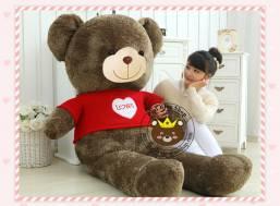 Teddy Jack bear áo len Love (1m8, 2m3)