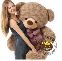 Teddy WILL (1M4)