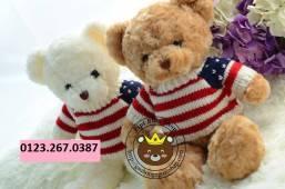 Teddy long xoan ao len (40cm)