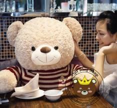 Gấu Teddy len sọc ngang (90cm, 1m2, 1m4, 1m8, 2m)