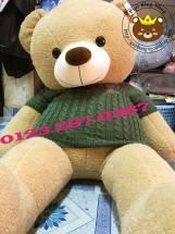Teddy Leo áo len xanh (1m4, 1m7)
