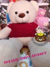 Teddy Leo áo len đỏ (1m4, 1m7)