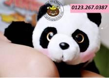 Panda lông dày (50cm)