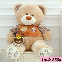 Teddy ao soc I love you (1m4)