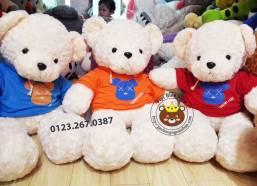 Gau teddy ao Gummy bear (80cm, 1m2)