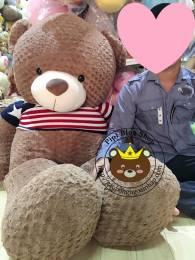 Gấu bông teddy texas 1m8