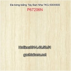 TKG BÓNG KIẾNG 600X600