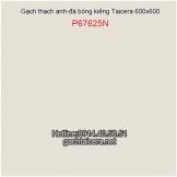 Gạch Taicera bóng kiếng 60x60 P67625N