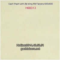 Gạch Taicera thạch anh 60x60 H68313