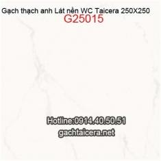 Gạch Taicera lát nền WC 25x25 G25015