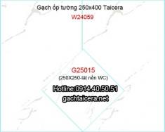 Gạch Taicera ốp tường 25x40 W24059