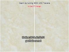 Gạch Taicera ốp tường 30x45 W34077